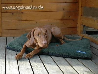 Farm-Land Faserpelz-Hundebett 100 x 70cm