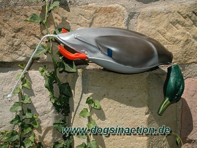 Dokken Deadfowl Trainer Stockente, groß