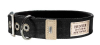 Hunter Canvas Halsband New Orleans 38mm, schwarz
